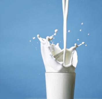 konsumsi susu