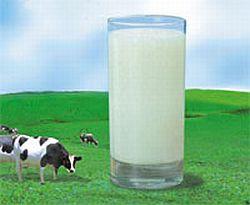 pemberian susu formula pada bayi